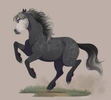 Onyx the Percheron