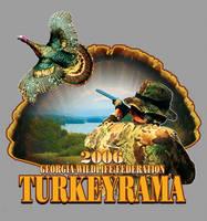 Turkey feathers by Darkmir