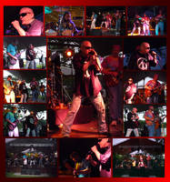 BANDS FOR CANS 2009 by Darkmir