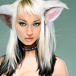 Neko - The catwoman- detail