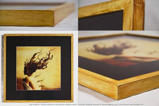 Law of nature- framed art