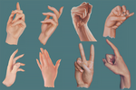 Male and Female Hand Studies