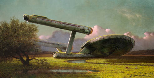 Forgotten Spaceship at the Meadow