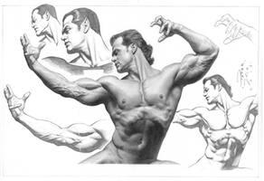 Estudo Anatomico em Meio Tom By Peter Vale