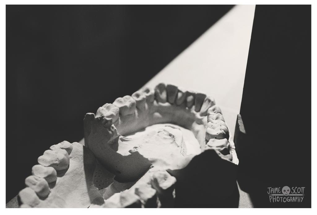 Show Me Your Teeth by Gliophorus