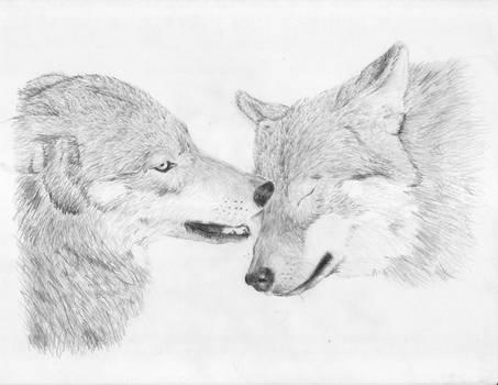 Wolfie Love