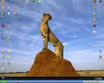 Cheetah Desktop