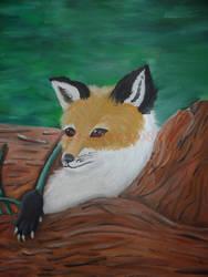 Red Fox by Wolfs-echo