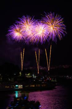 Bastille Day Fireworks 15