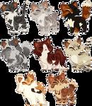 Cat Adopt Batch | Closed