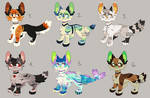 Canine Adopts | CLOSED