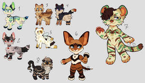 Discounted Unsold Adopts | 3/7 Open