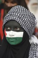 Face Painting - Phalastein Flag by zeshanadeel