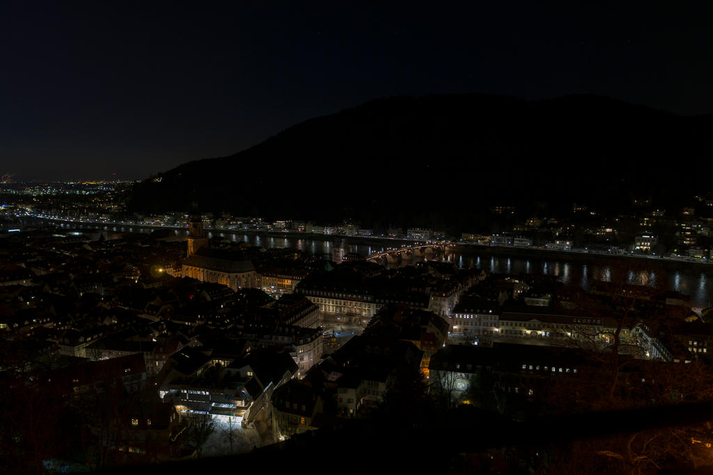 Heidelberg by night - taken from the castle down by DansPhotos