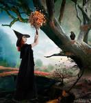 The Mystic's Dream