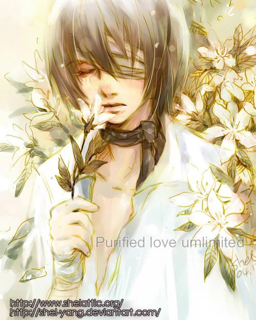 purified love umlimited by shel-yang