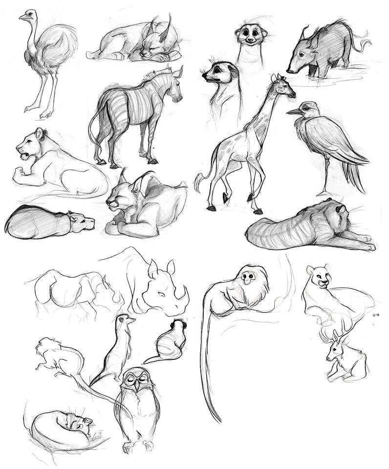 Animal Drawings 09 by rollingrabbit on DeviantArt