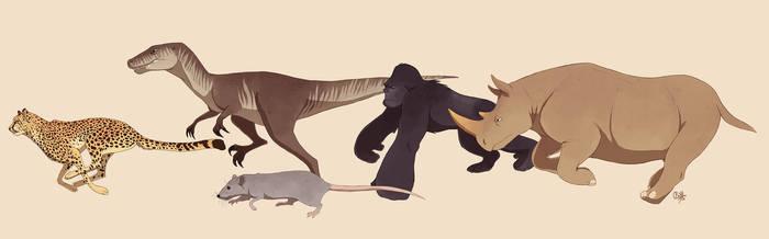 Beast Wars by rollingrabbit