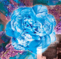 BlueRosePrint
