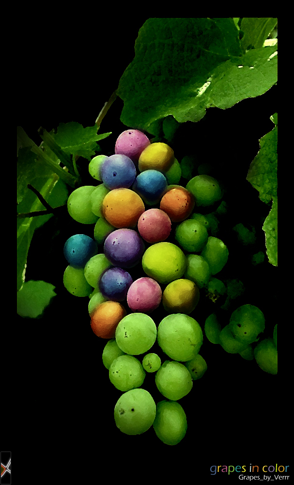 Grapes in ColoR by emam013