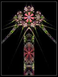 Dehiscent Iris by MescalineBanana