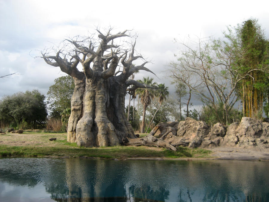 [JdR] Oltrée ! Jezz'Iera African_landscape_by_reenie_bleenie-d5o9f7v