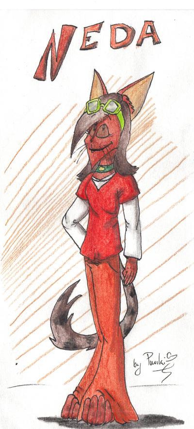 Neda- character sheet by punki123