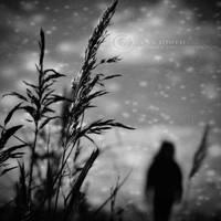 Dreaming of.. by ZanaSoul