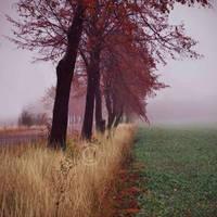 Autumns melody by ZanaSoul