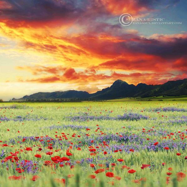 It's a beautiful day. by ZanaSoul