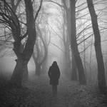 Misty Mornings by ZanaSoul
