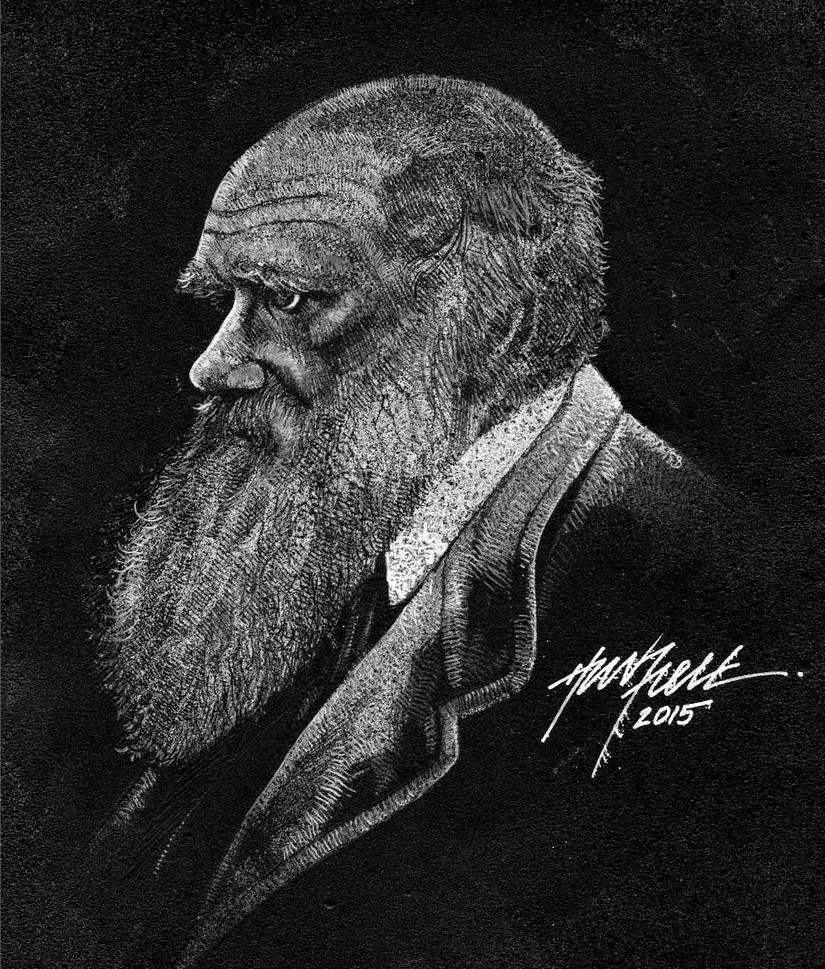 Darwin by hazzla