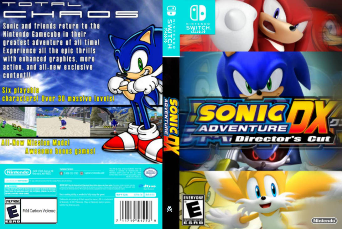 Sonic Adventure DX Nintendo Switch Classic Cover A by