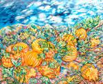 The Pumpkin Fields by tutuzi22