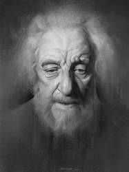 Old Man Portrait by Naranb