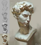 Bust study - David