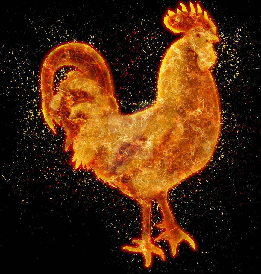 Fire Rooster Tandoori by Tri-Edge-1836