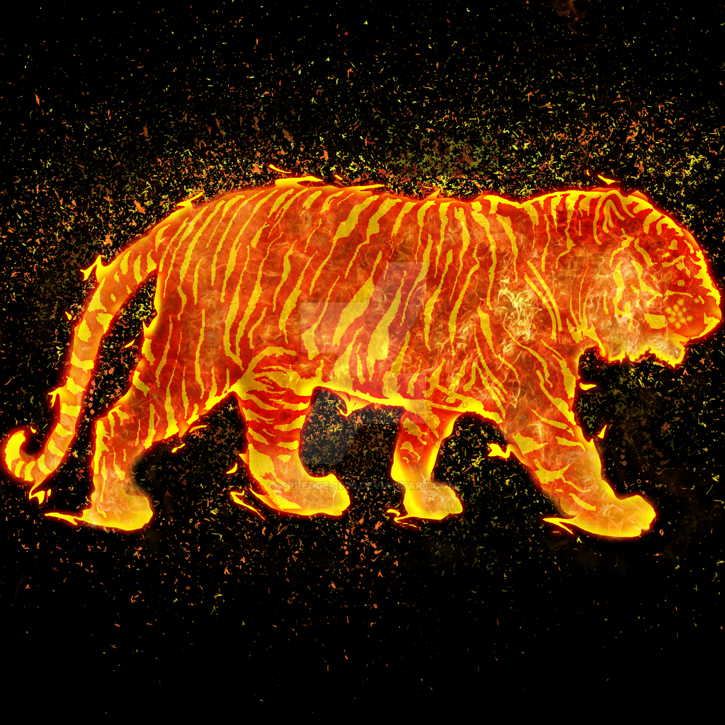 Fire Tiger By Tri Edge 1836 On Deviantart