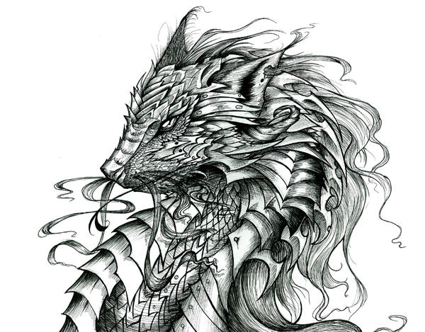 Celtic Dragon by PhantomSeptember on deviantART