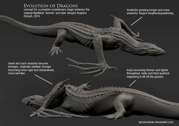 Evolution Of Dragons by TurnerMohan
