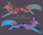 Dog adopt