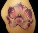 Wild Orchid Tattoo