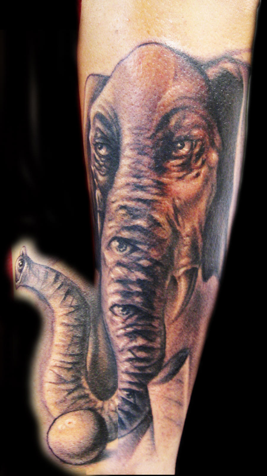 Freehand elephant tattoo by hatefulss