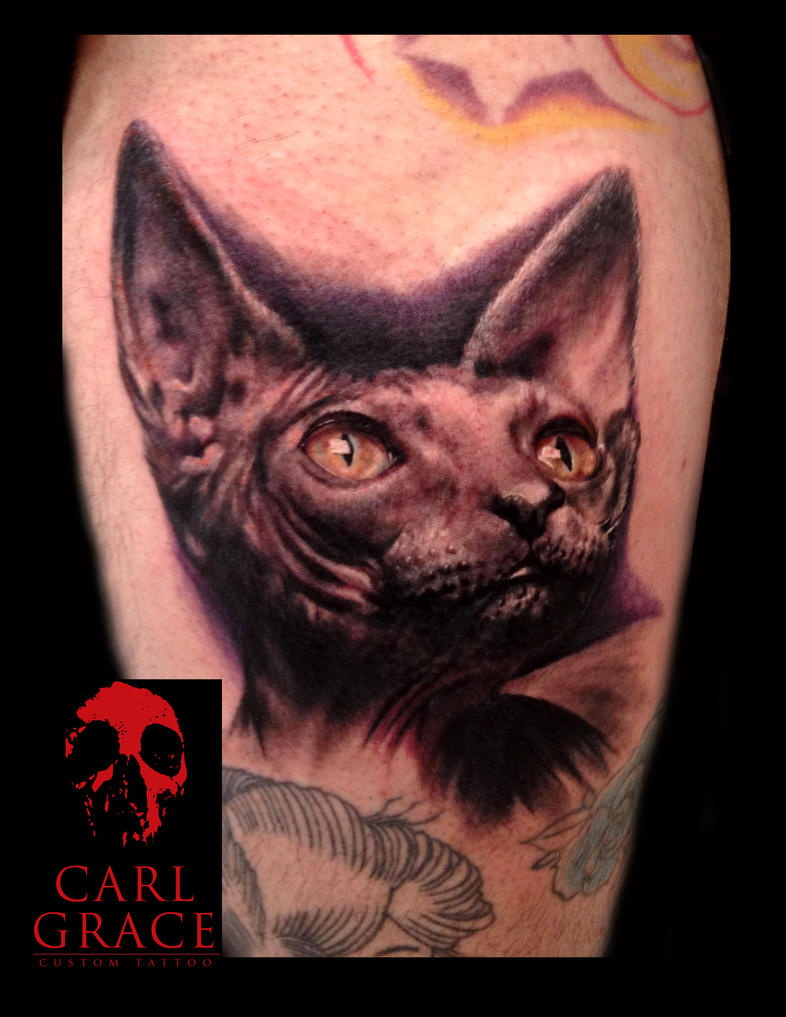 sphinx tattoo by hatefulss