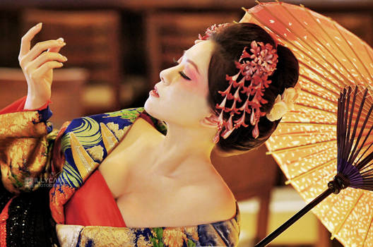Memoirs of a Geisha