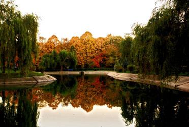 Autumn Landscape by AlinManole