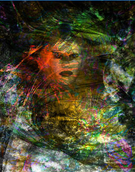 Portrait   abstract mess