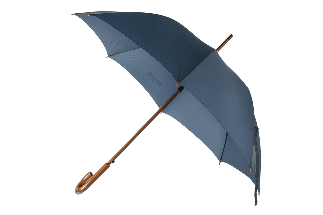FREE PNG Umbrella by AbsurdWordPreferred