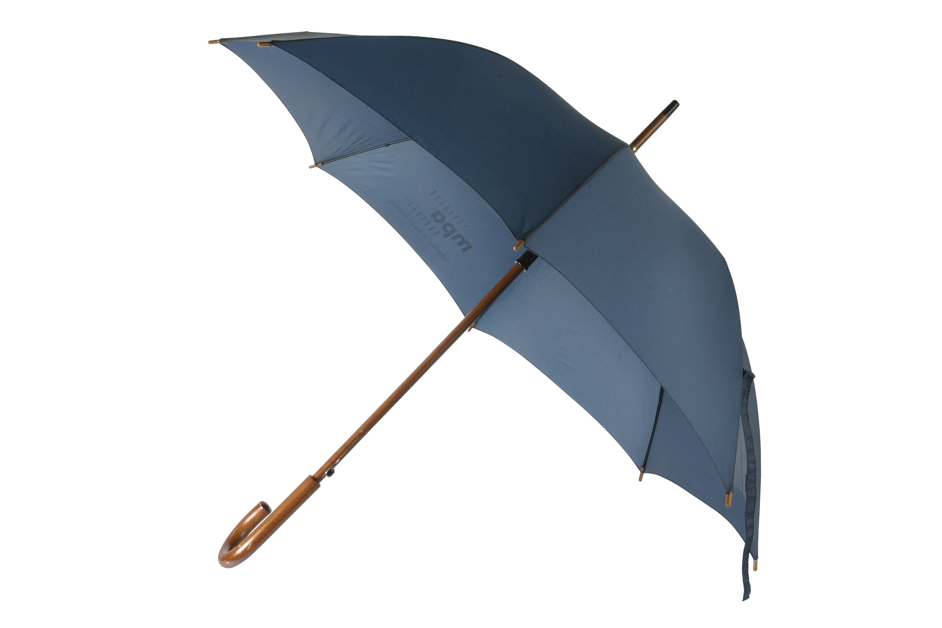 FREE PNG Umbrella