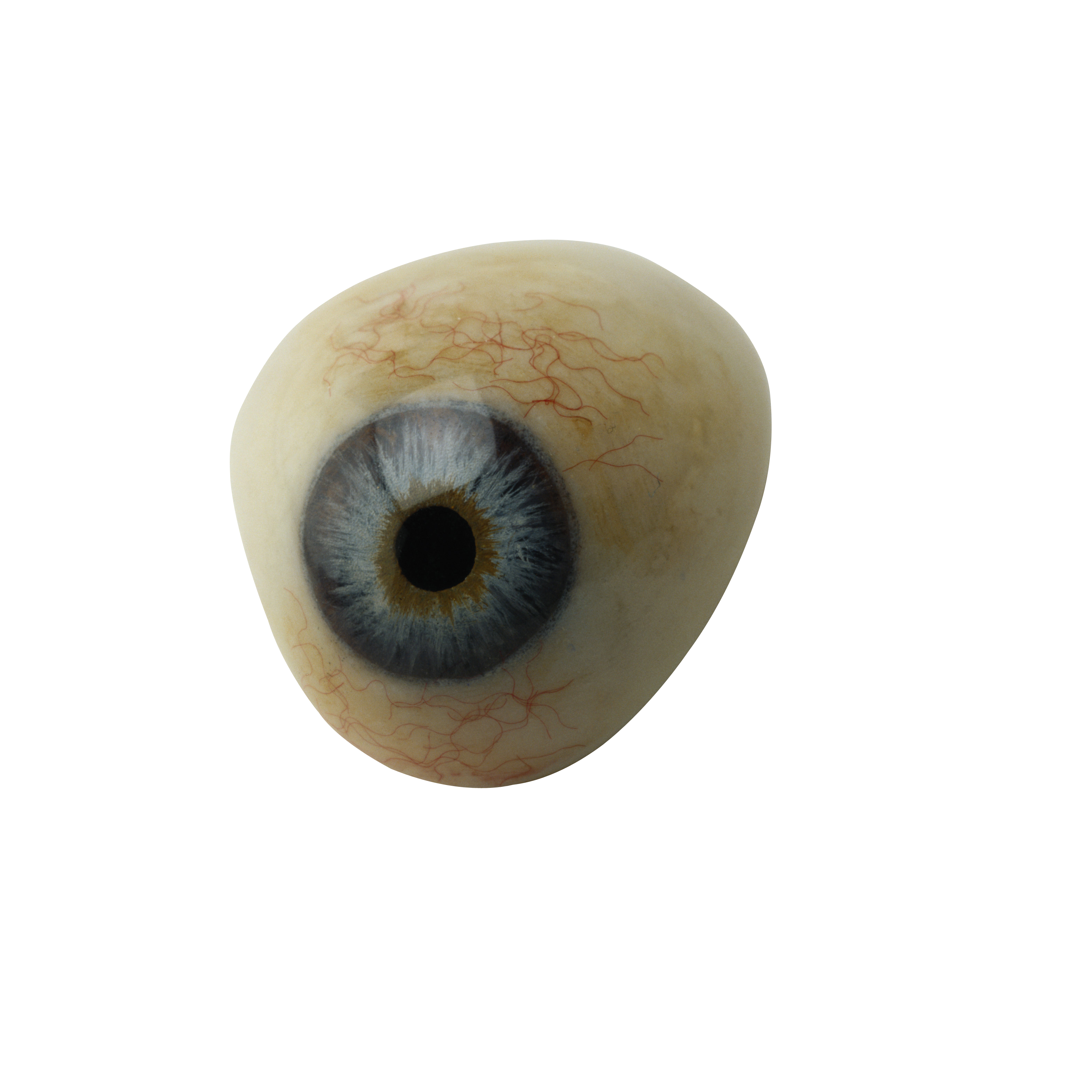 Eye Transparent Png By Absurdwordpreferred On Deviantart